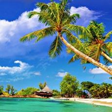 Beach Tours