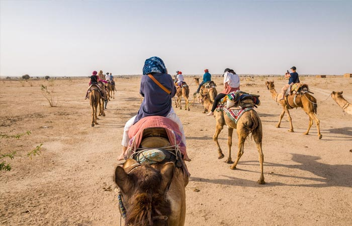 Camel Safari provinces in India