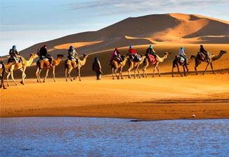 Camel Safari Destinations