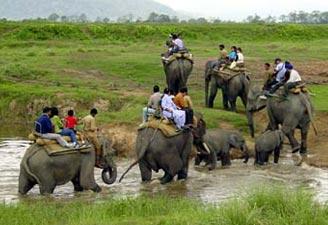 Elephant Safari provinces in India