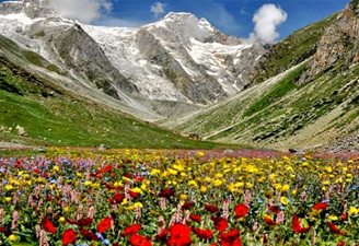 Nanda Devi & Valley of Flowers